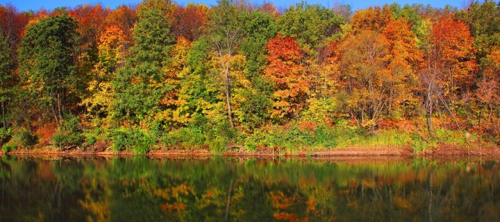 See Fall in All Its Beauty at Gatineau Park