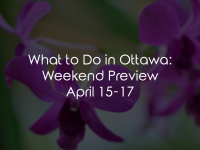 What to Do in Ottawa: Weekend Preview April 15-17