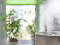 5 Signs You Need a Humidifier