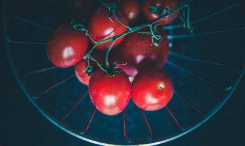 A Great Guide to Home-Grown Tomatoes