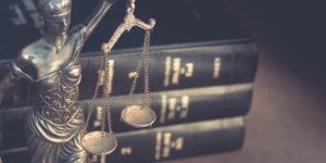 Ottawa Business Profile: Shaw Legal Service