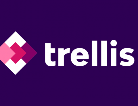 Trellis secures $1M in pre-seed funding and announces Intelligent platform for Amazon Advertising